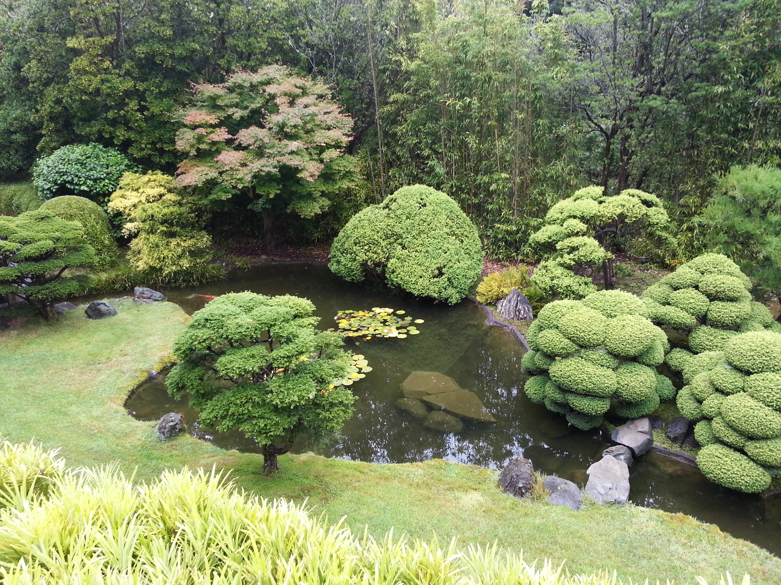 San Fran Trip Japanese Tea Garden Golden Gate Park Forkit